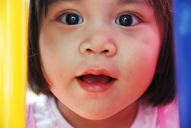 early childhood education career