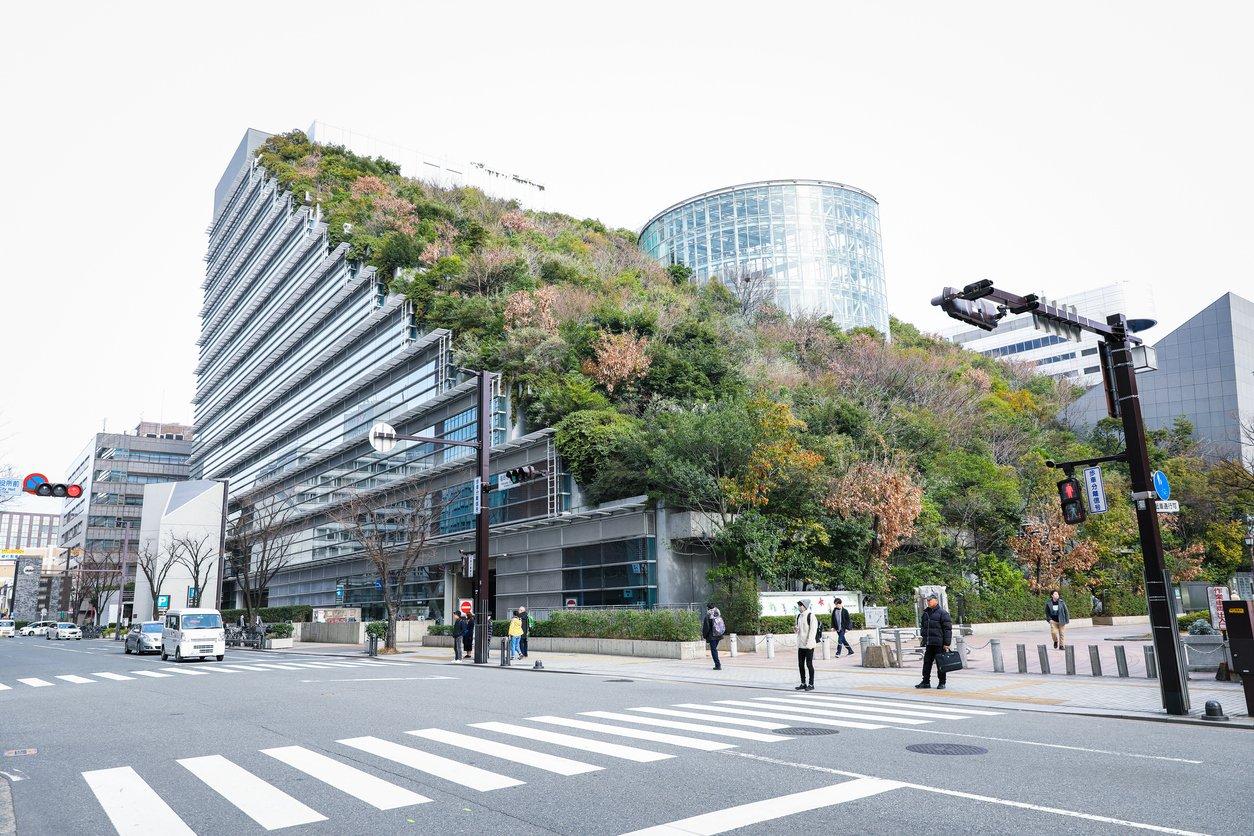 sustainable architecture training