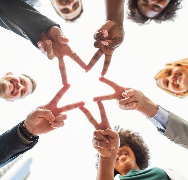 Vos options de carrière après une formation en affaires 5 alternatives professionnelles