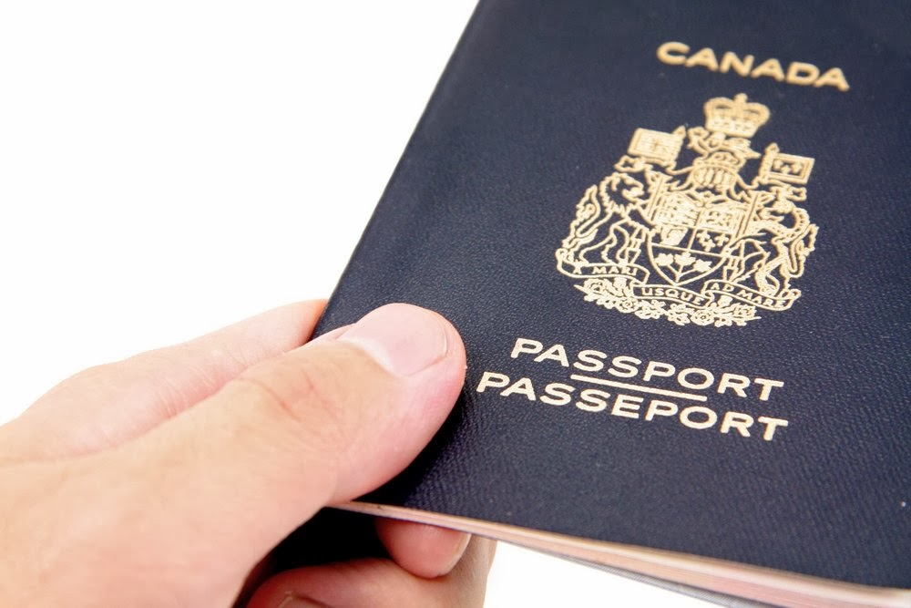 The Growing Importance of Immigration Consultants