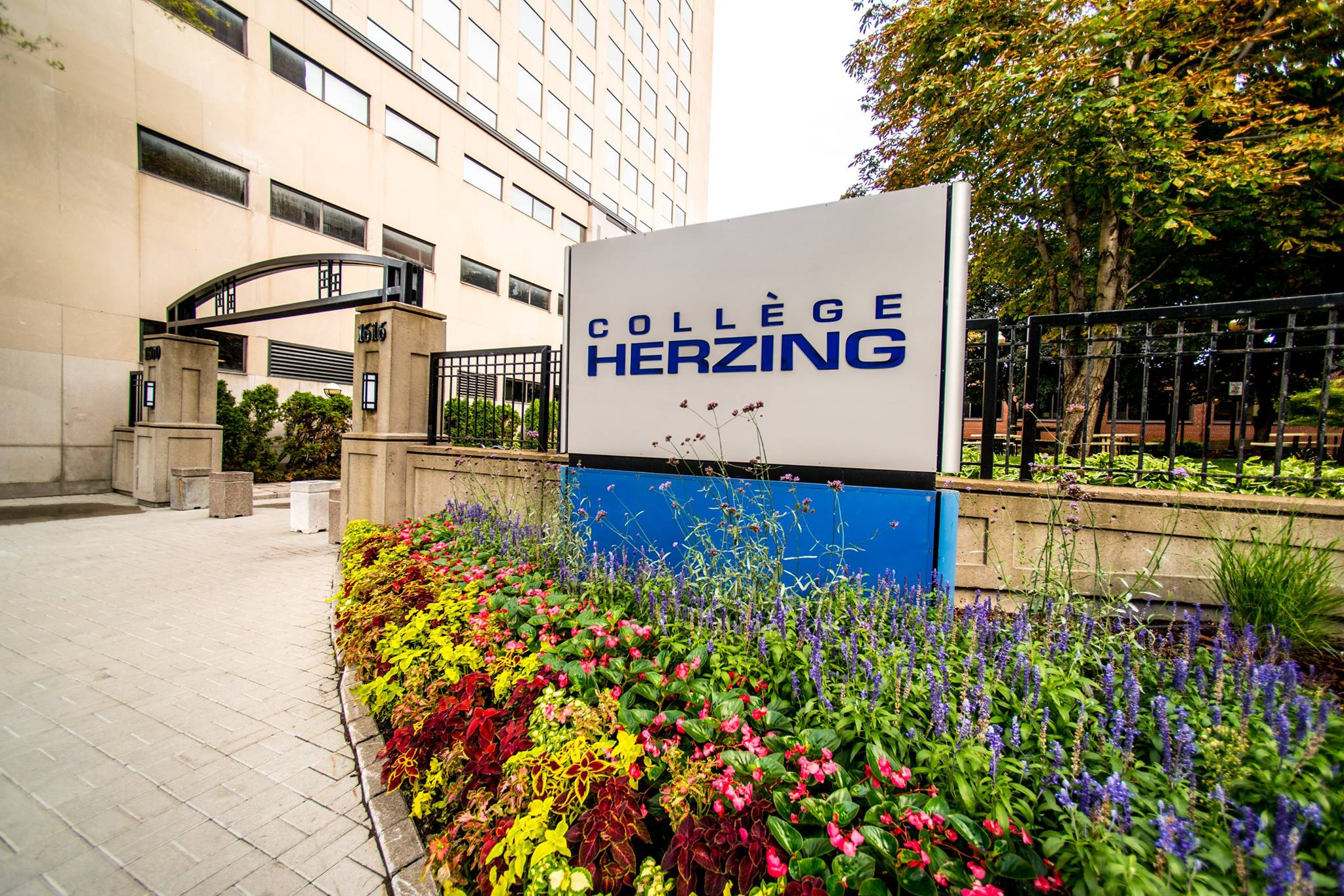 What's it Really Like to Study 3D Animation at Herzing?