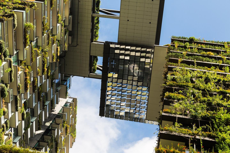 Tout ce qu'il faut savoir sur le programme en architecture durable
